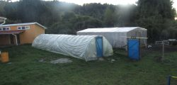 Invernaderos Escuela Termas de Puyehue