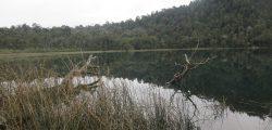 Laguna El toro