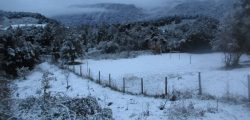 Nieve en jardin botánico Escuela Termas Puyehue