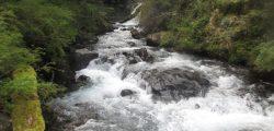 Río en Anticura