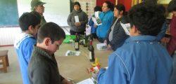 Taller medicina natural Escuela Termas de Puyehue