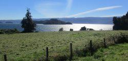 Weiko o lago Puyehue