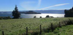 Weiko o lago Puyehue (3)