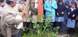 Wetripantu Puaucho