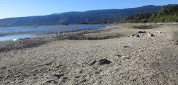 playa lago Puyehue