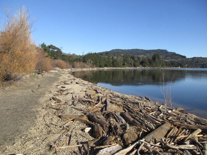 Lago-Puyehue